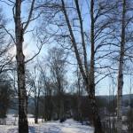 Spaziergang im Schnee (5. Februar 2012)