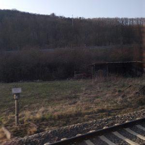 Mit der Bahn durch die Pfalz.