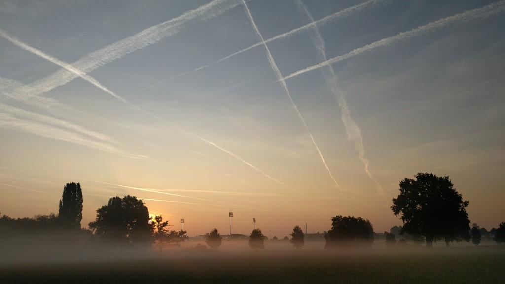 Am frühen Morgen in der Aachener Soers.