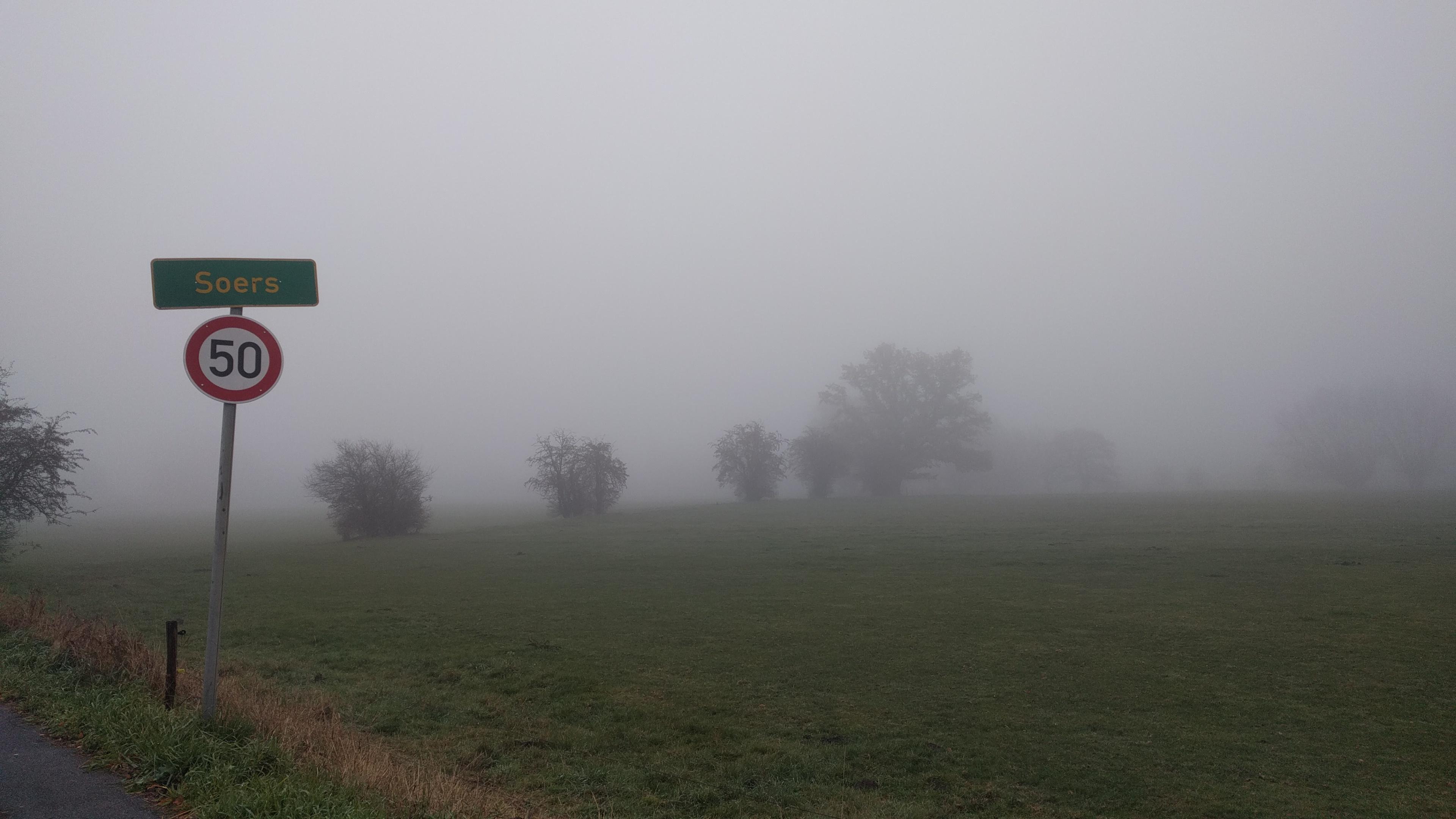 Die Aachener Soers im Nebel.