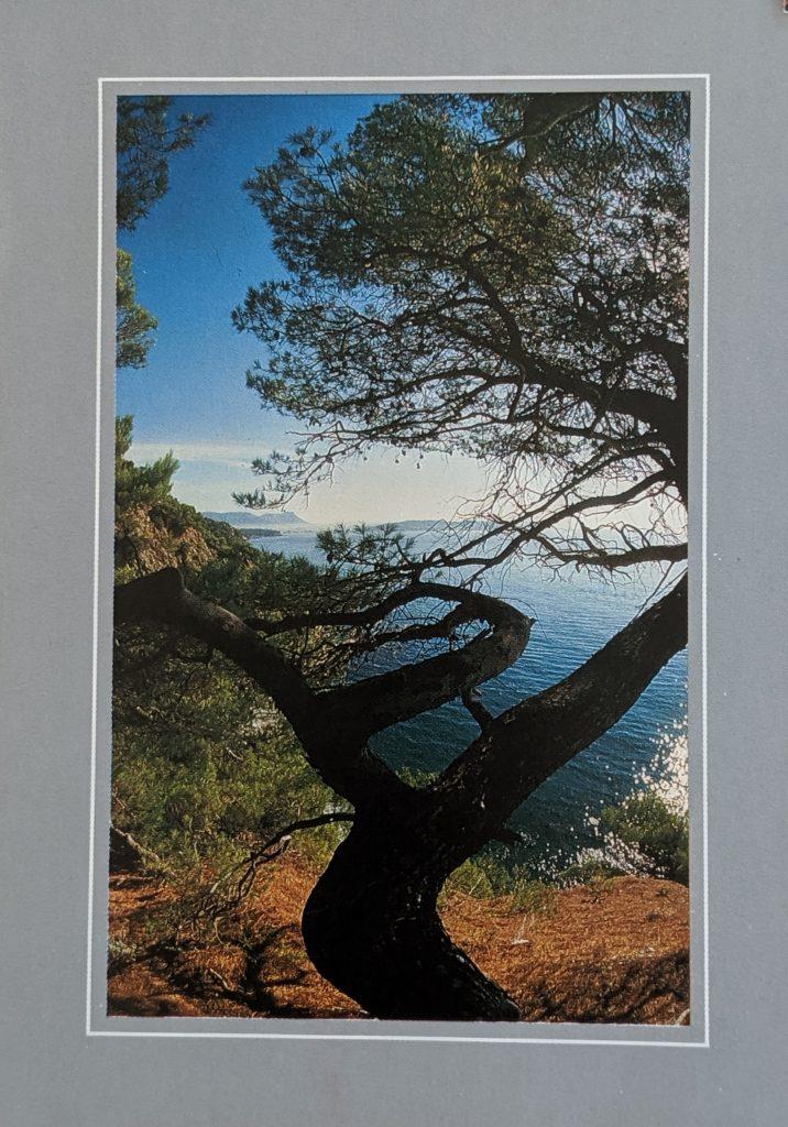 InterRail 1989: Postkarte aus Cassis (1)
